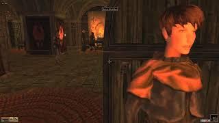Morrowind, 120 mods, 353