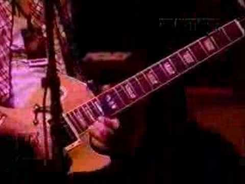 Tak Matsumoto - Sunset cover live (gary moore) Video