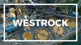 WestRock (MeadWestvaco) by Drone | Covington, Virginia