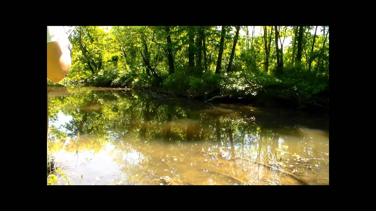 Eastern pa carp fishing youtube for Pa out of state fishing license