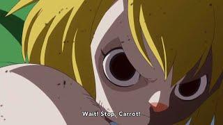 Zoro Vs Carrot