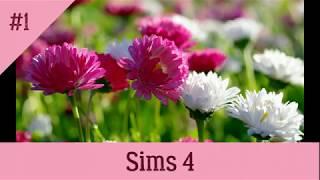 Sims 4/ мой дом /чит коды/лиззка смотрит