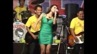 download lagu Pria Idaman   Rena Kdi gratis