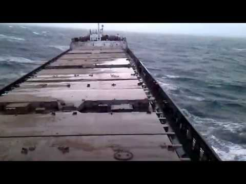 Каштаны моряк