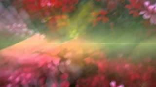 Robert Paul de Guia - Visions of Nature - W.Pilsak