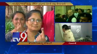 Gujarat polls : PM Modi's mother- Amit Shah and Former CM Anandiben Patel cast their votes  - netivaarthalu.com
