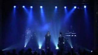 Клип Diary Of Dreams - Traumtanzer (live)