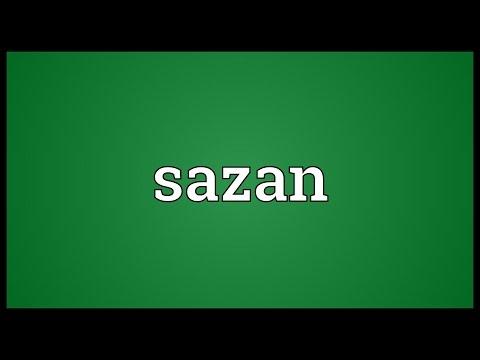 Header of sazan
