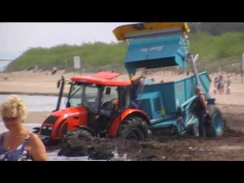 Ciągnik ugrzązł w glonach na plaży