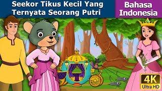 Seekor Tikus Kecil Yang Ternyata Seorang Putri - dongeng bahasa indonesia - Indonesian Fairy Tales