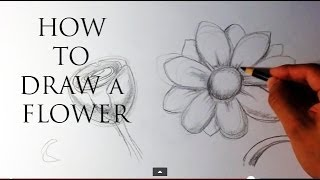 How to Draw a Flower - Easy Drawings