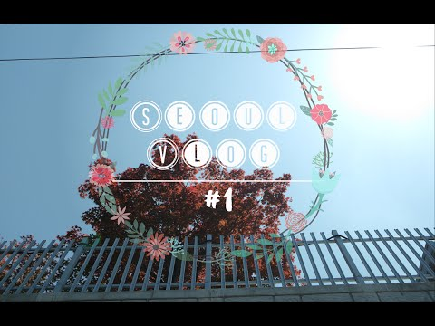 12 Day ✈ 서 울 | Seoul vlog | part one