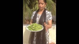 Beans (kothevaranga)