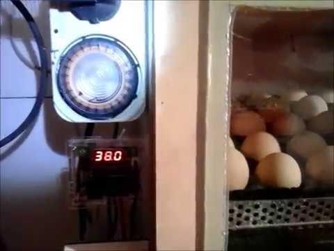 Mecanism intoarcere oua incubator-Hobby-Egg turning mechanism for incubators