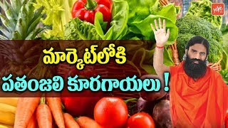 Baba Ramdev's Patanjali Vegetables Coming Soon in Market | Patanjali Products
