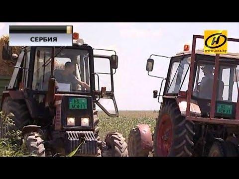 Беларусь -- Сербия: чего ждёт Белград от Минска и что мы можем предложить балканской стране?