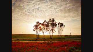 download lagu Tongan Love Song gratis
