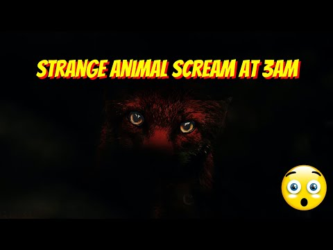 Scary SCREAM!  UNKNOWN CREATURE!  18+ ONLY