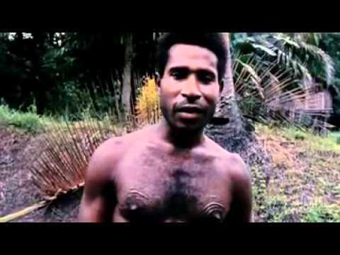 cannibal tours Ver cannibal tours online hd (1988) de dennis o'rourke - película completa en castellano, gratis y subtitulada.