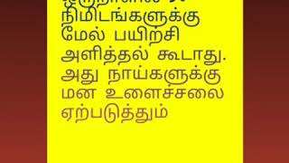 About Dog training in tamil