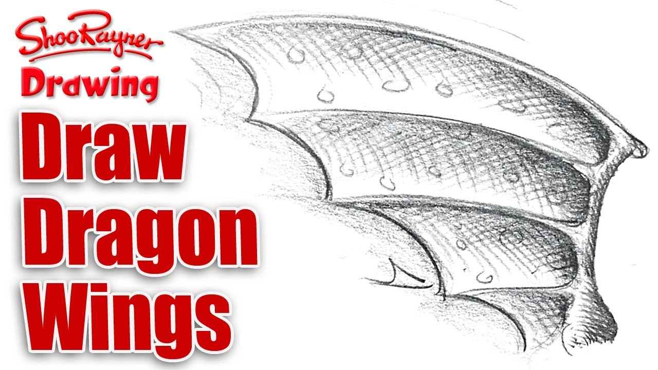 Dragon Wing Shape How to Draw Dragon Wings