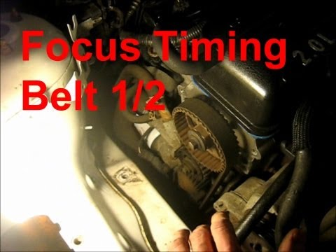 Ford Focus Timing Belt. Tensioner. Accessory Belt. and Water Pump Part 1/2