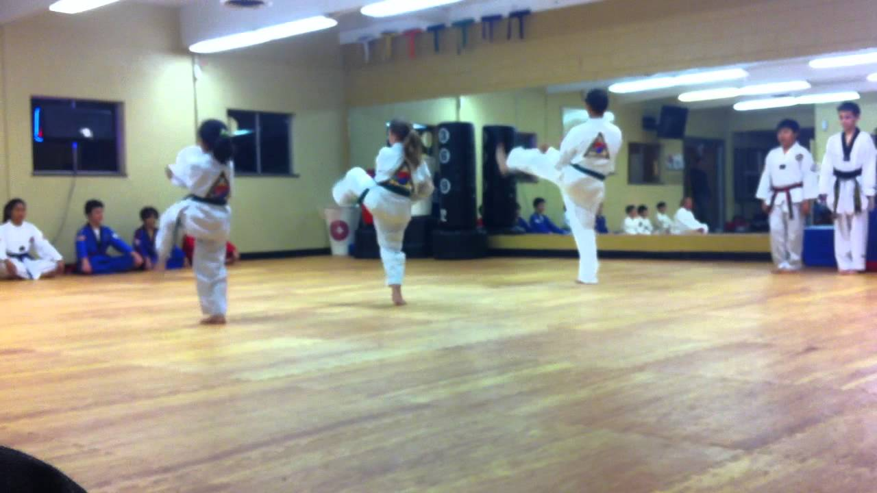 Taekwondo Purple Belt Test