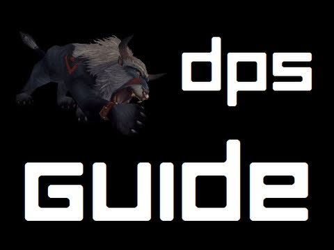 Feral Druid DPS Rotation and Openers (World of Warcraft PvP/PvE)