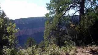Transept Trail, north rim, Grand Canyon National Park, AZ.wmv