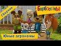 Барбоскины Юные агрономы Сборник мультфильмов mp3