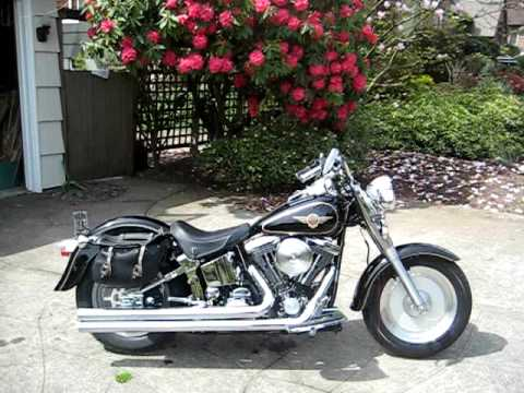 Harley Davidson Fat Boy with Longshots