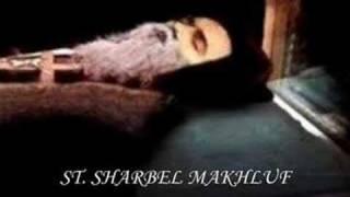Download Lagu FENOMENA : Jenazah Tidak Reput ( The Incorrupt Bodies of the Saint ) Gratis STAFABAND