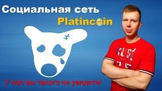 Социальная Сеть PlatinCoin соц сеть, где Вам Платят