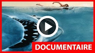 Documentaire - les dents de la mer / les origines ( hd - vf )