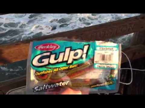 Surf perch fishing in oceanside youtube for Oceanside pier fishing reports