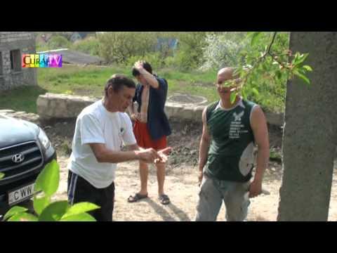 Pădure privatizată apoi tăiată la Dumbrava