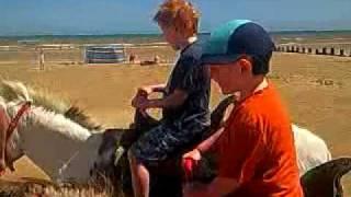 Donkey rides on Dymchurch beach....
