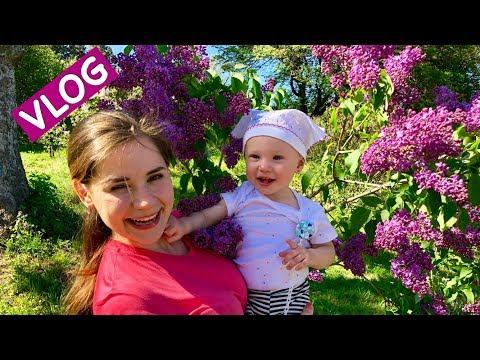 Vlog: Посмотрите Какая КРАСОТА!!! Ботанический сад