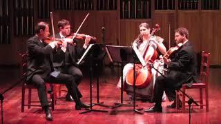 Brahms: String Quartet Op. 51 No. 1 - I. Allegro (Kontras Quartet)