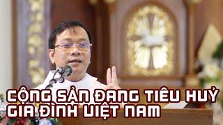CỘNG SẢN ĐANG TIÊU HỦY GIA ĐÌNH VIỆT NAM - Lm. Antôn Lê Ngọc Thanh, DCCT
