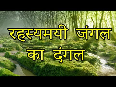 10 Most Mysterious and Beautiful Forests in the World (Hindi)