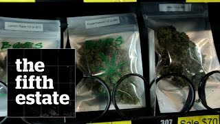 Marijuana vending machine : a first in Canada - the fifth estate