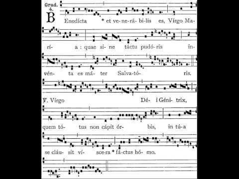 Gregorian Chant - Beata es Maria