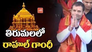 Congress President Rahul Gandhi Visits Tirumala Temple | TTD VIP Darshans