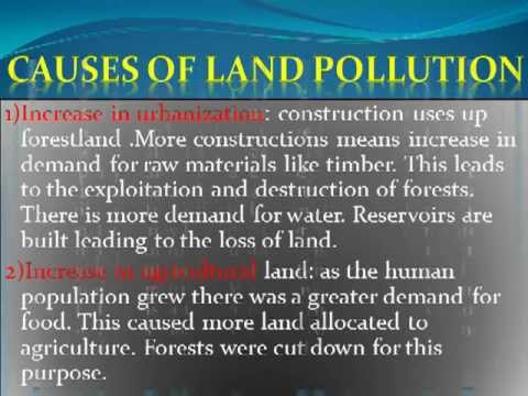 land pollution essay in english Check out our top free essays on land pollution to help you write your own essay.