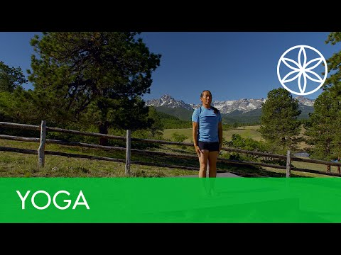 Power Up Yoga with Rodney Yee: Connect | Yoga | Gaiam