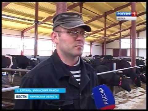 В селе Елгань Унинского района введена в строй роботизированная ферма(ГТРК Вятка)