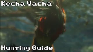 Hunting a Kecha Wacha | Hunting Guide | Monster Hunter 4 Ultimate