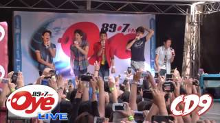 CD9 The Party