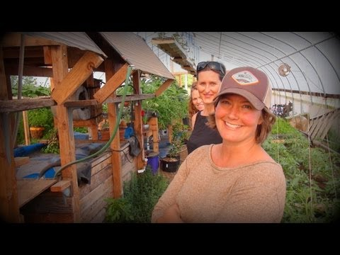 The Cutest Farmers on YouTube - Casa Verde CSA